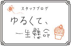 さぬきうどんの亀城庵スタッフブログ